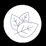 Trois feuilles qui se superposent